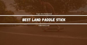 3 Best Land Paddle Stick To Boost Up Your Speed